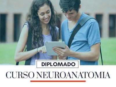 Protected: NEUROANATOMIA