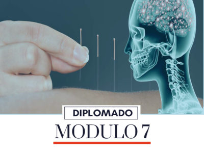 Protected: MODULO 7