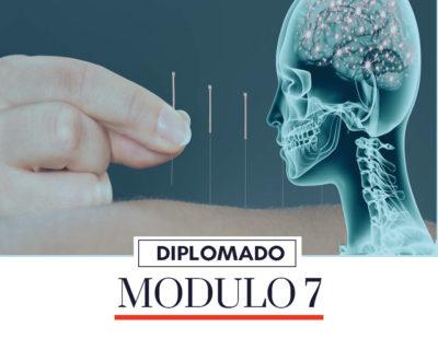 MODULO 7