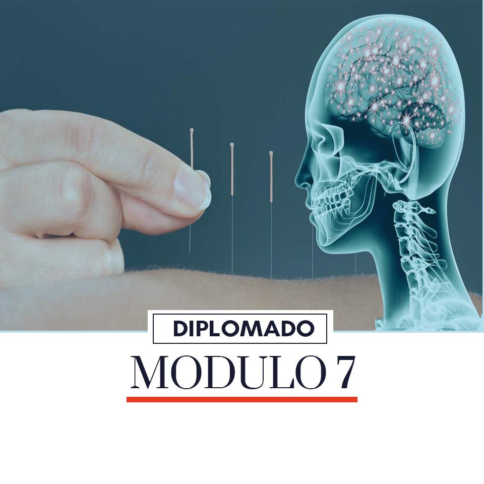 acupuntura-modulo-7